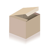 Abus Fahrradhelm In-Vizz Ascent Polar Matt